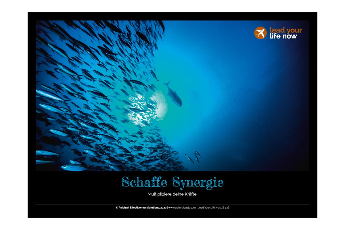 Agile Visuals Postkarte 5